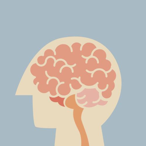Managing Your Brain